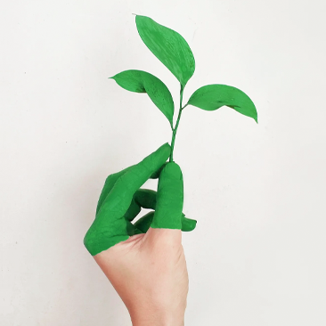 Hábitos para preservar o meio ambiente: economia de energia