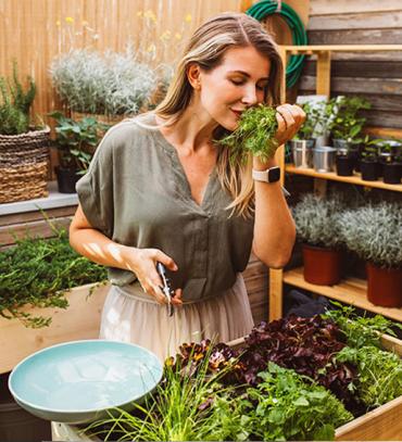 Aprenda a cultivar uma mini-horta em casa!